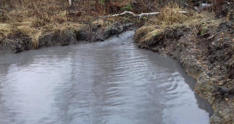 До чого сниться каламутна вода: тлумачення сну про брудному водоймі по Міллеру та іншим сонникам