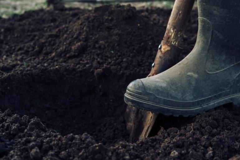 До чого сниться копати землю: тлумачення рити або колупатися в грунті по сонникам різних езотериків
