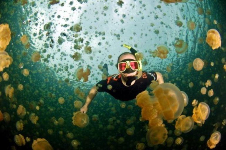 До чого сниться купатися в морі: плавати чистою і теплою воді, в брудному водоймі