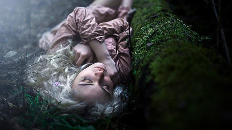 До чого сниться ліс: тлумачення по сонникам, інтерпретація для чоловіків і жінок, сюжети з тваринами