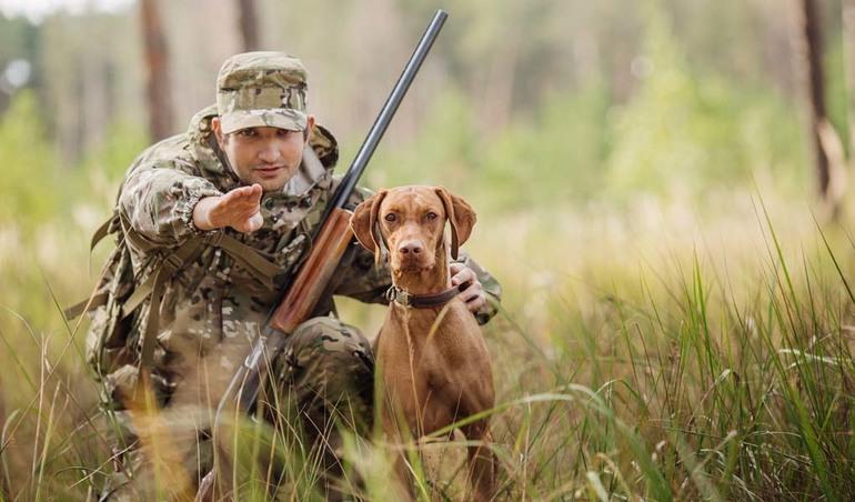 До чого сниться полювання: полювати на вовків та інших тварин, трактування сну в різних сонники