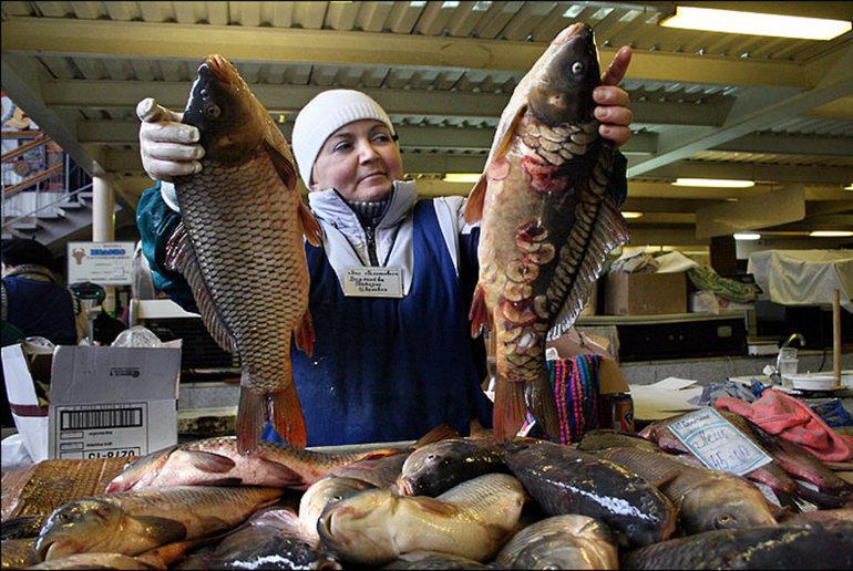 До чого сниться продавати рибу: версії різних сонників і думки фахівців