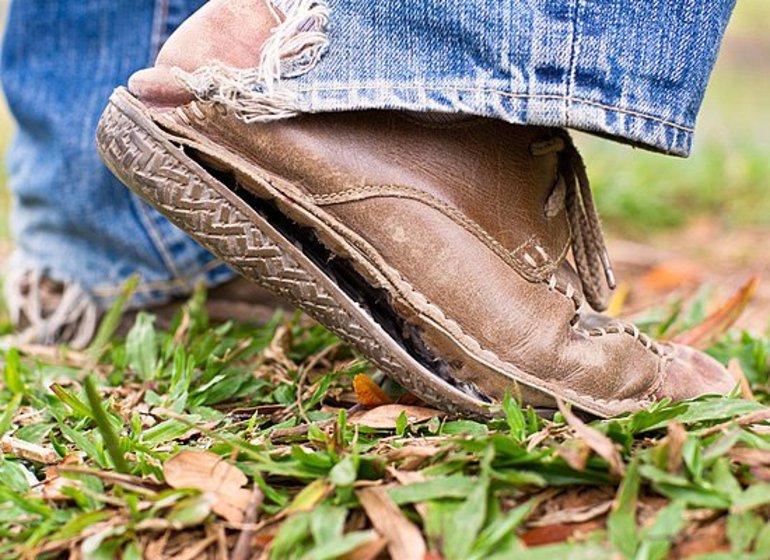 наличие квартир фотографии брака обуви вряд