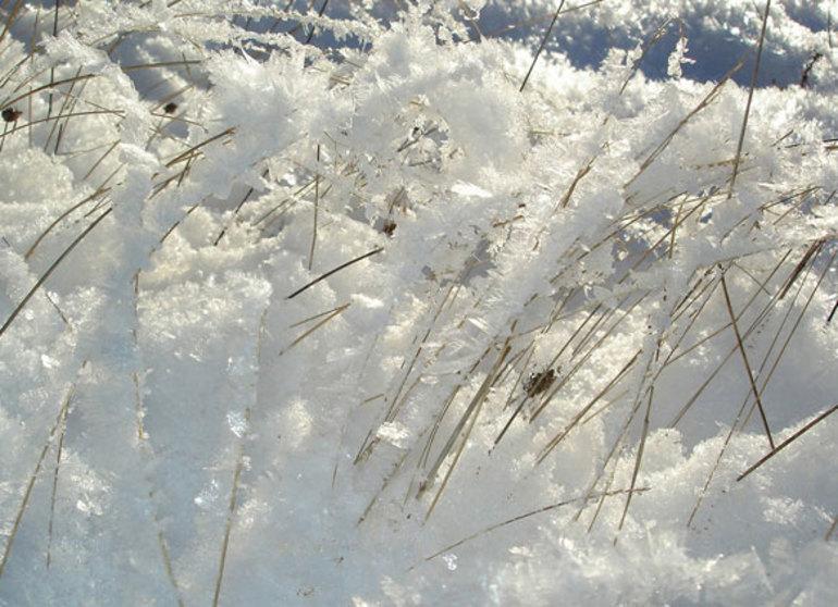 До чого сниться сніг: чистий чи брудний, замети і мокрий снігопад
