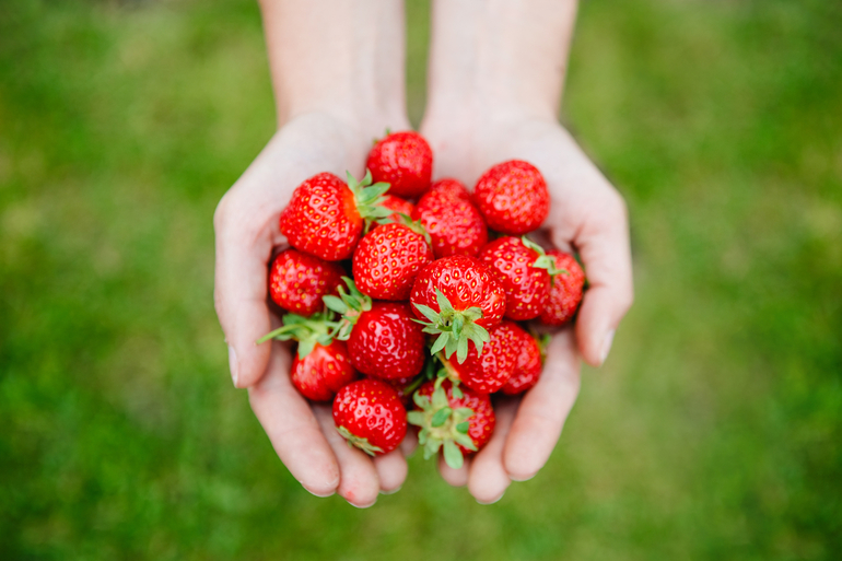 До чого сниться суниця: тлумачення сонників, збирати велику і червону ягоду уві сні