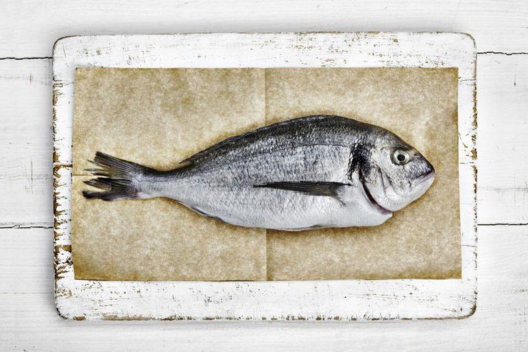 До чого сниться тухла риба: що буде, якщо чоловікові або жінці довелося бачити вночі протухнув улов