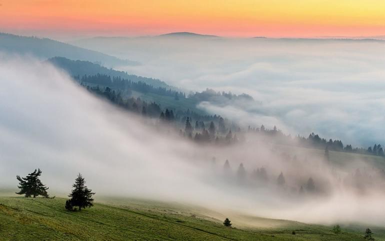 До чого сниться туман: поява на дорозі, над водою, чи в місті, значення сну за різними сонникам
