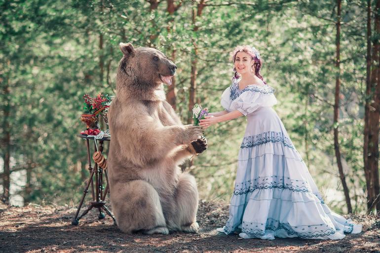 До чого сниться ведмідь: тлумачення сонників для жінок і чоловіків, образ тварини і дії
