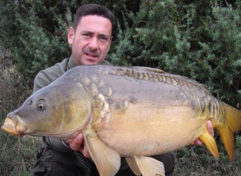До чого сниться велика риба: велика особина в річці, тлумачення по соннику для чоловіків, жінок і дівчат