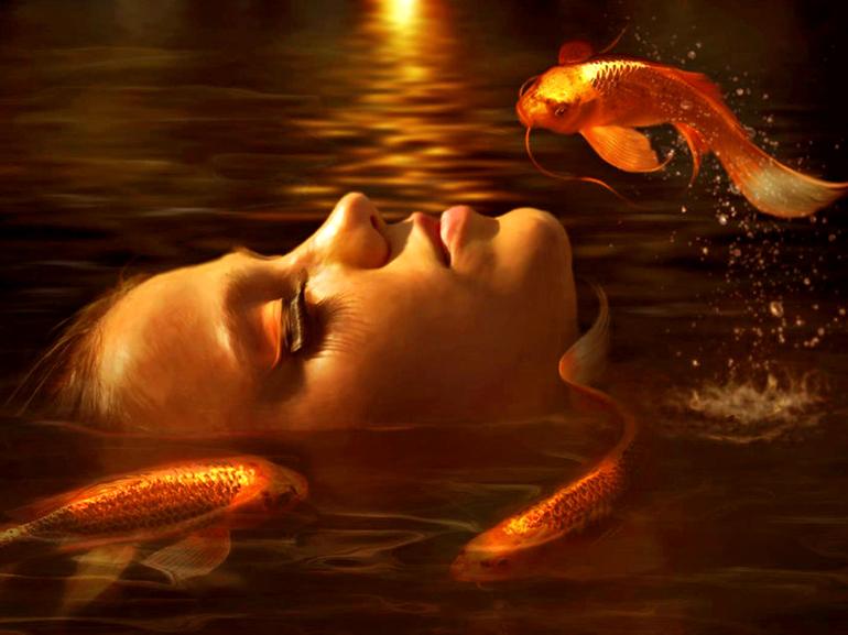 До чого сниться золота рибка у сні: тлумачення різних сонників, бачити її в акваріумі