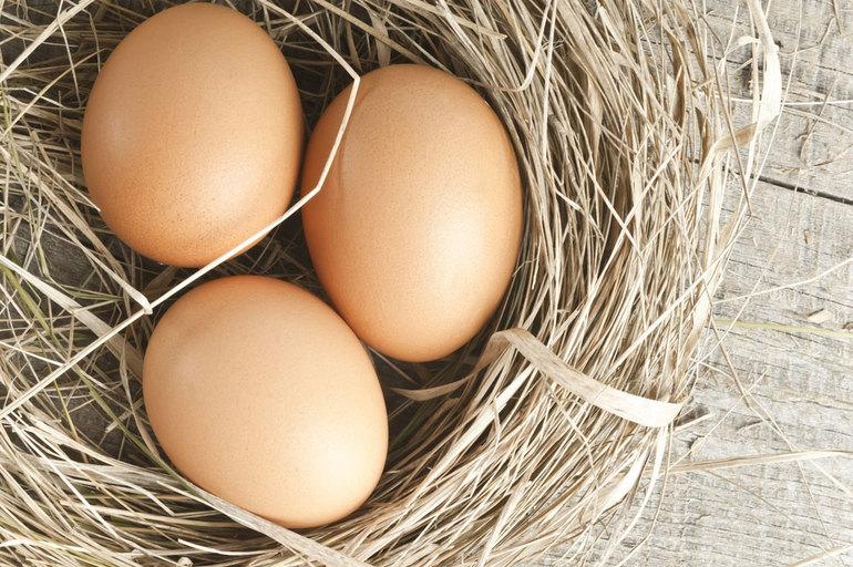 До чого сняться тухлі курячі яйця: різні сонники і сюжети