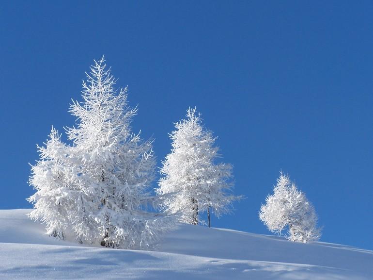 Сниться снігопад чоловікові і жінці: характеристика за сонником, як йшов сніг, що робив чоловік під час хуртовини