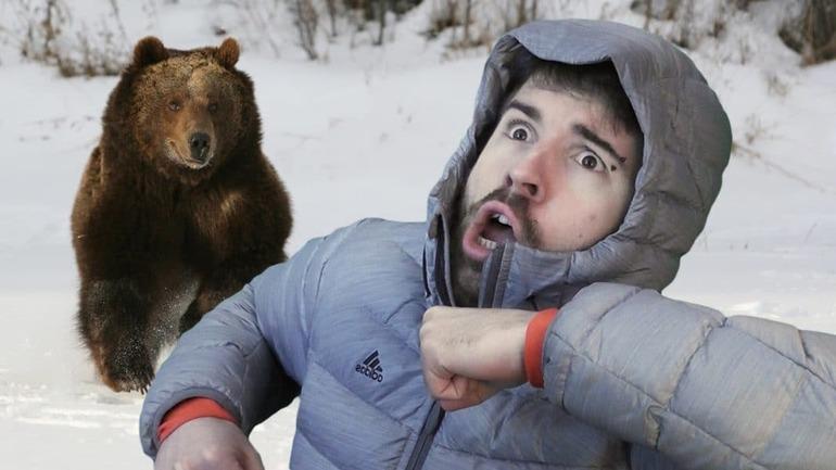 Сон «ведмідь женеться за мною»: розгадка бачення, в якому переслідує звір, по соннику для чоловіка і жінки