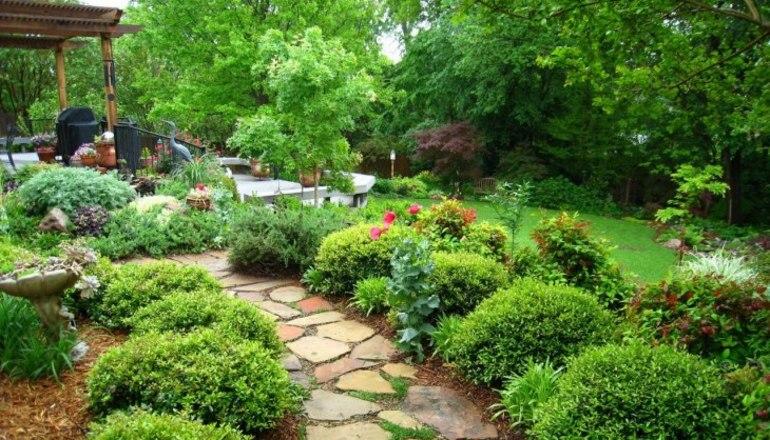 Сонник про сад: що може означати