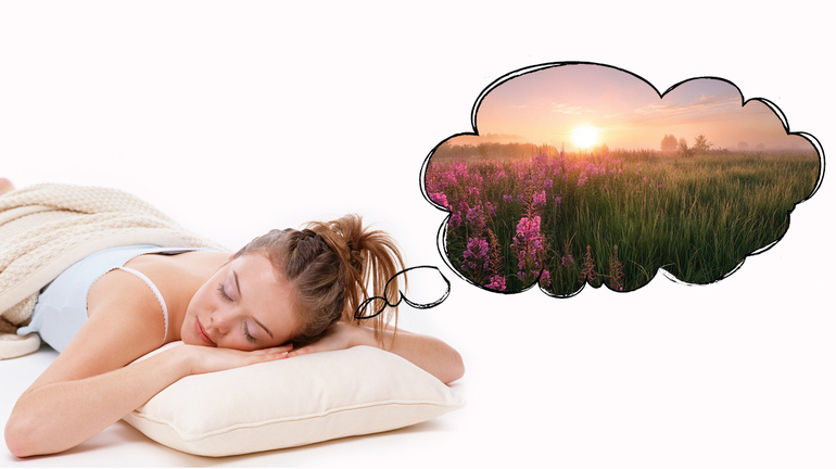 Віщі сни: як побачити, в який день тижня сниться і тлумачення за місячним календарем